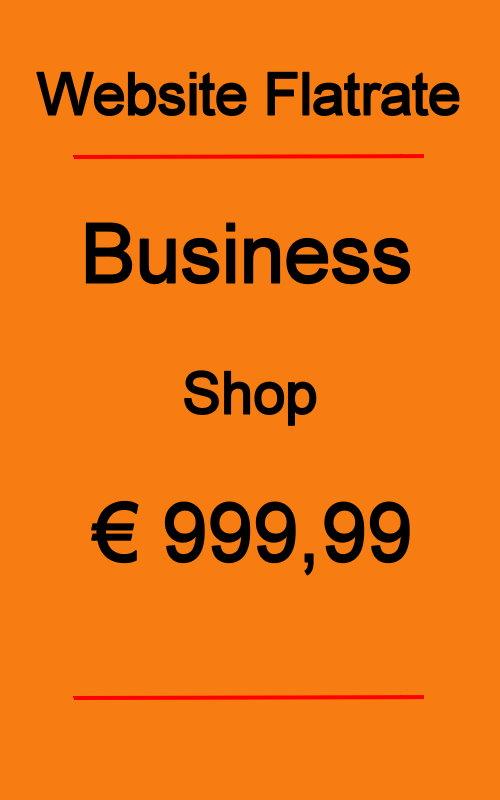 Dives Webseite Business Shop 2020