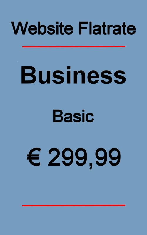 Dives Webseite Business Basic 2020