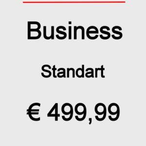 Dives Webseite Business Standart 2020