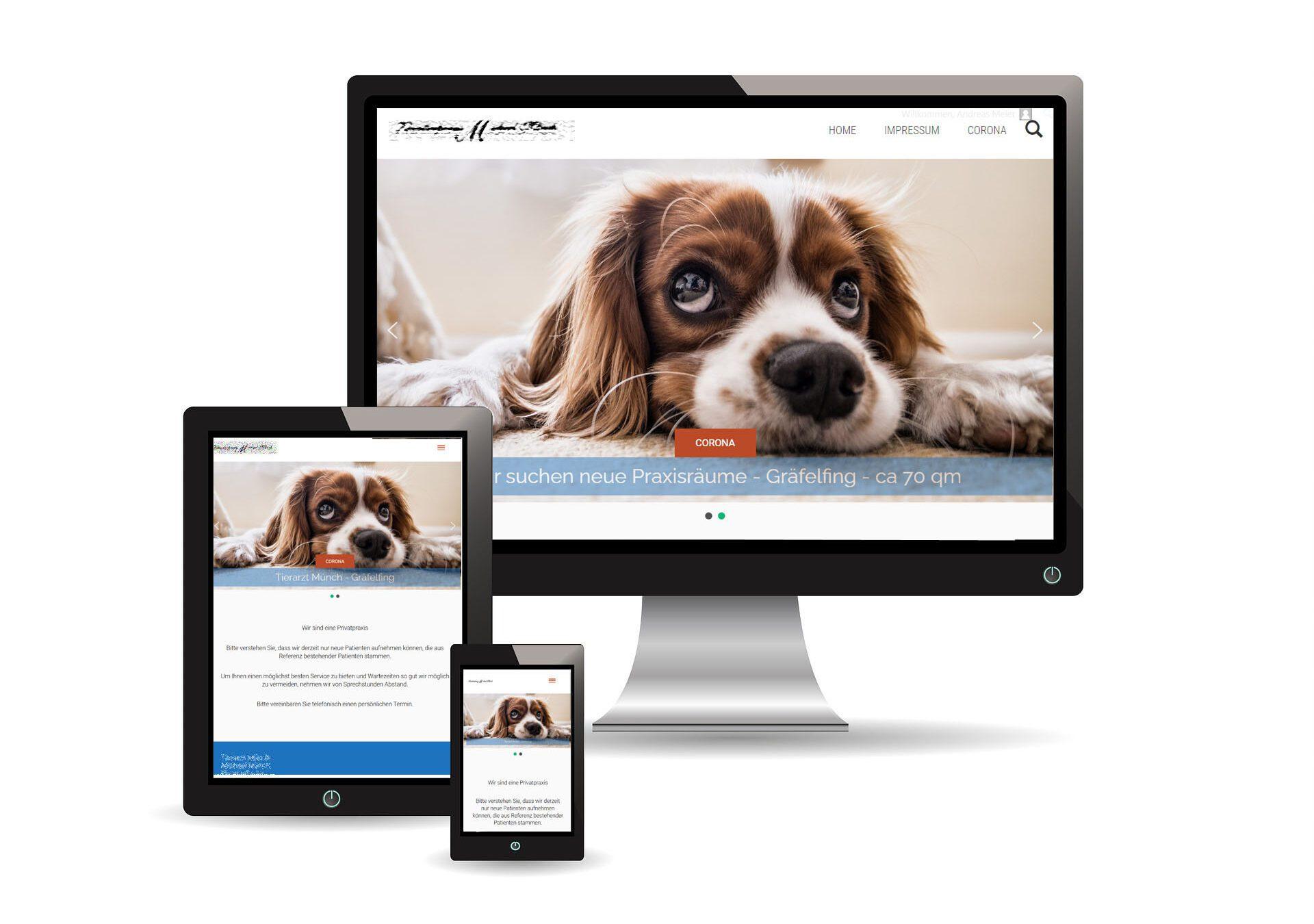 best website tierarzt sample